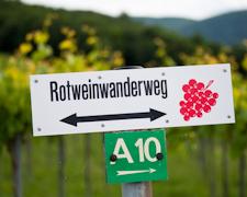 Törggelen - Die Südtiroler Herbsttradition