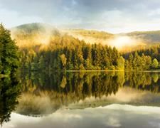Wandern im Harz - Brocken, Talsperren und Naturdenkmäler warten!