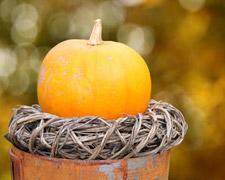 Schöne Herbstdekorationen zum Selbermachen