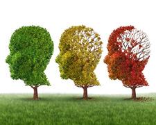 Tipps zur Vorbeugung von Alzheimer & Demenz